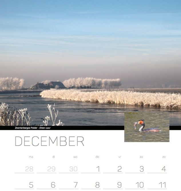 kalender 1